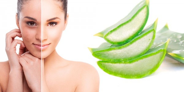 BENEFICIOS DEL GEL DE ALOE VERA PURO